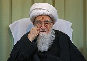 شیعیان برای ترویج معارف نورانی علوی همت کنند