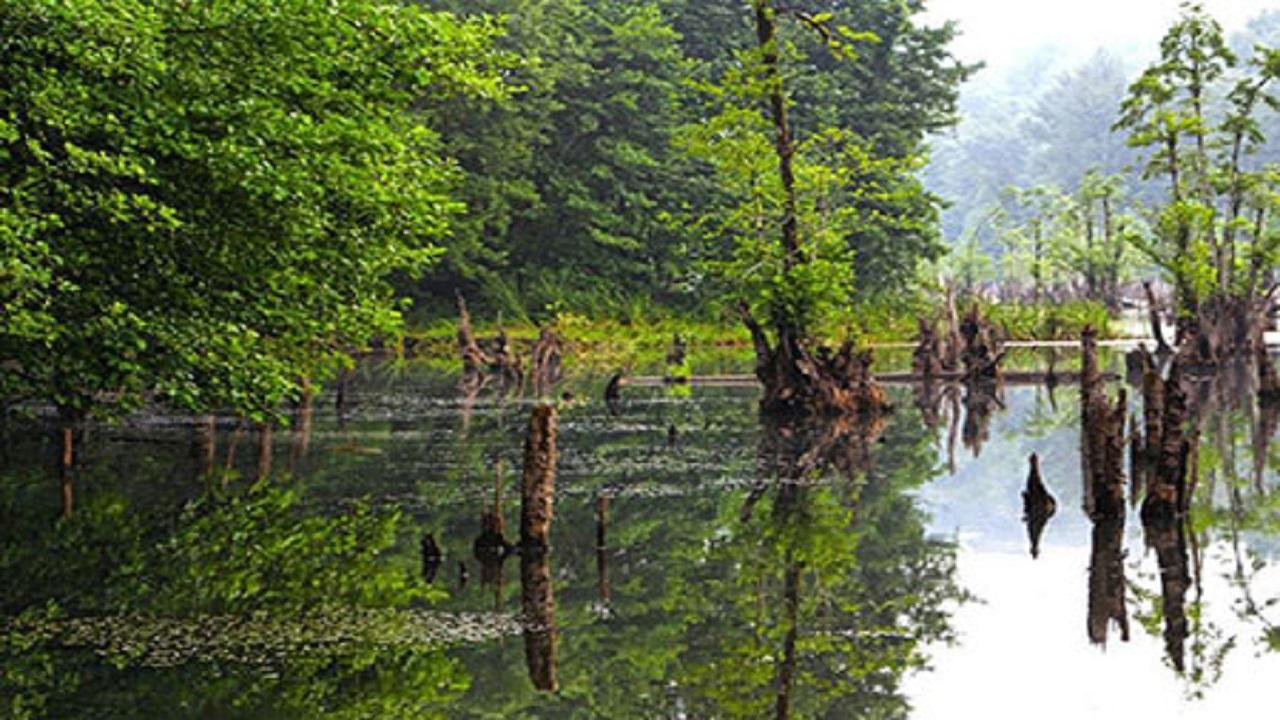 آشنایی با «دریاچه ممرز» + تصاویر