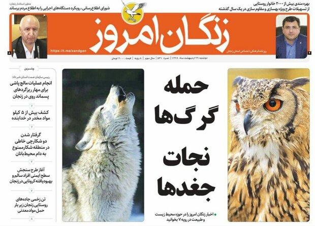 نزول کرونا در زنجان/حمله گرگ ها نجات جغدها