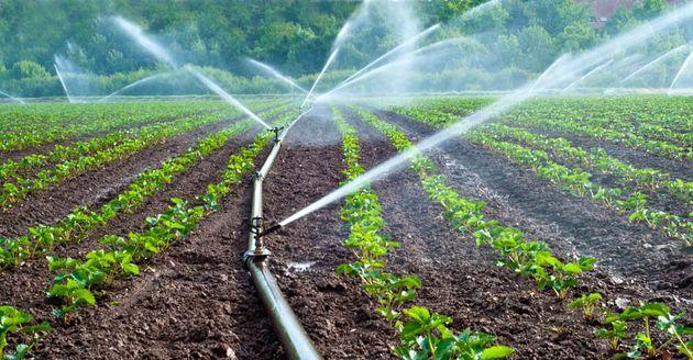 اجرای آبیاری نوین در بیش از ۹ هزار هکتار از مزارع شهرستان ملایر