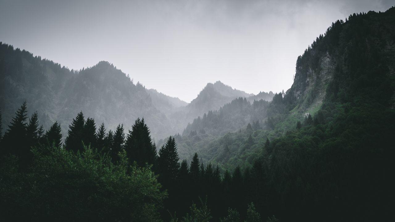 برترین تصاویر پسزمینه (۱۵ خرداد)