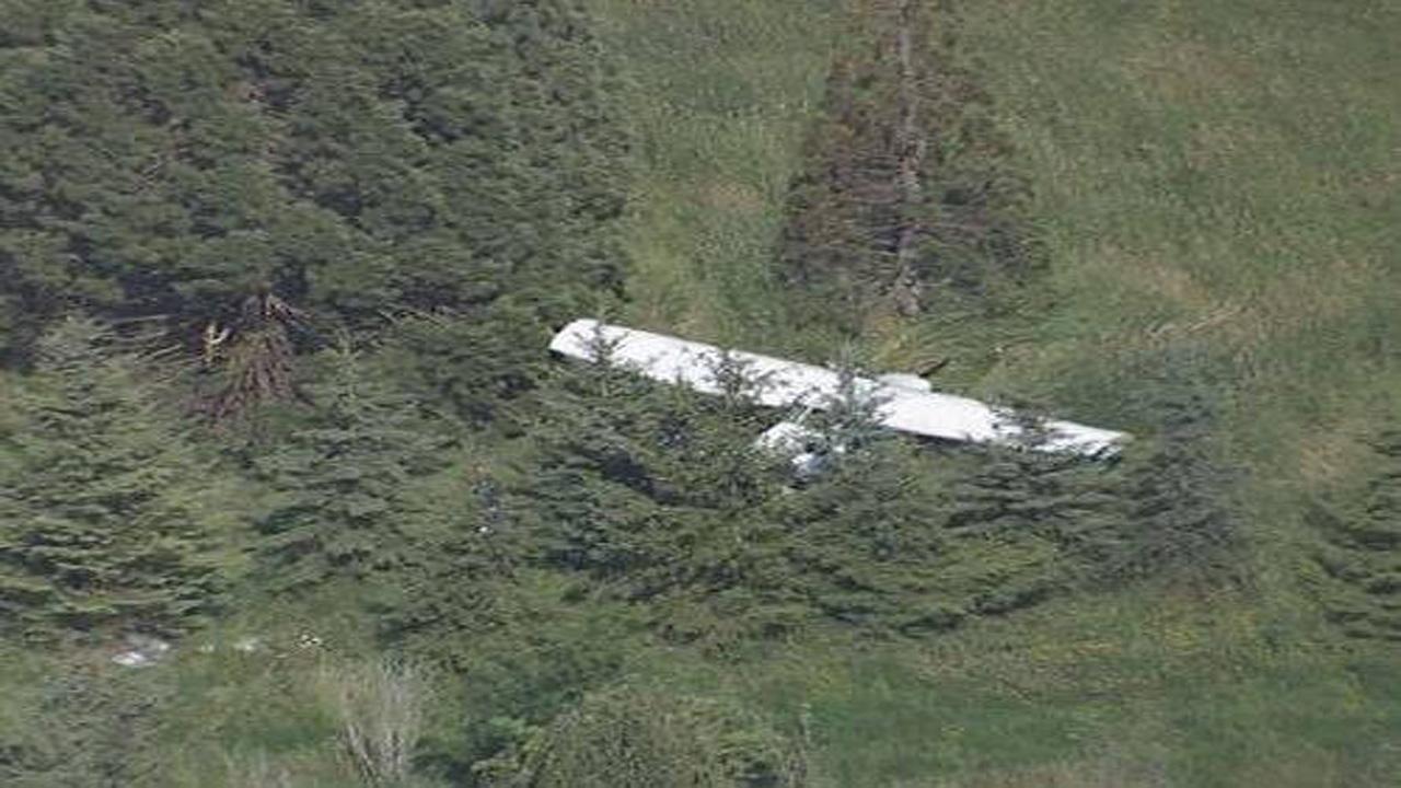 سقوط یک هواپیما در سلمانشهر