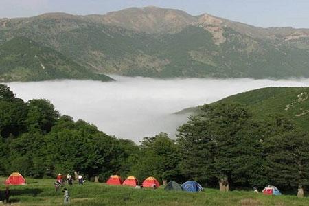 دانستنیهای جالب درباره جنگل ابر شاهرود