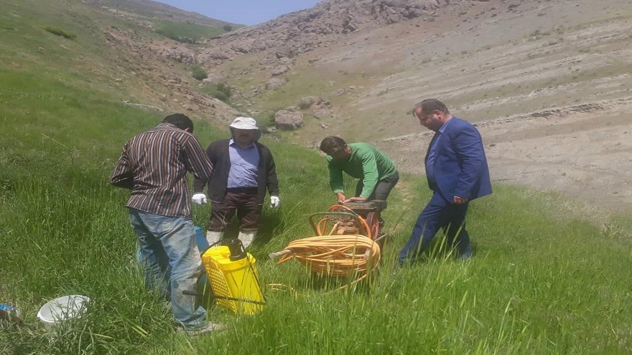 پایش مزارع وکنترل و مبارزه با ملخ بومی البرز توسط مدیریت جهاد کشاورزی شهرستان کرج