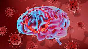 بلایی که ویروس کرونا بر سر مغز میآورد