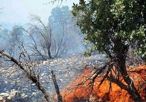 جنگلهای اندیکا ار حصار آتش رها شدند