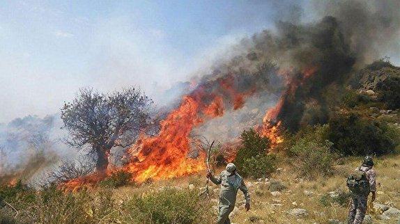 آتش به جان درختان نوجوان بلوط افتاد/لزوم اعزام بالگرد به مراتع زاگرس