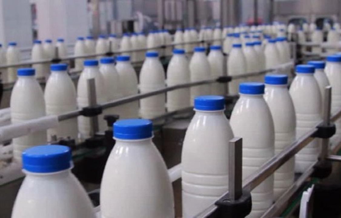 تولید بیش از ۵۵۸ هزار تن شیر در آذربایجانشرقی