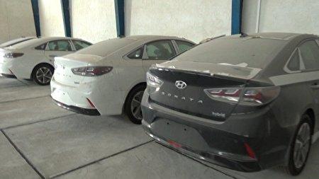 انبار خودروهای خارجی بدون پلاک در بوشهر کشف شد