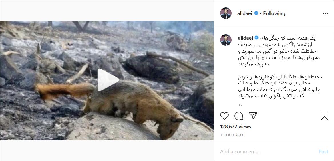 واکنش علی دایی به آتشسوزی جنگلهای زاگرس؛ تبریک تولد فوتبالیست معروف به فرزندش؛ مرتضی پورعلیگنجی روز کودک را به برادرزادهاش تبریک گفت