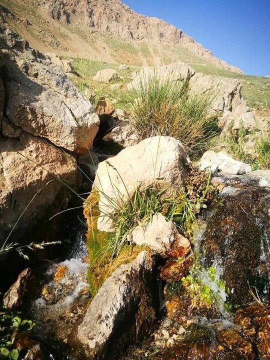 تصاویری زیبا از طبیعت بهاری در روستای چوبین