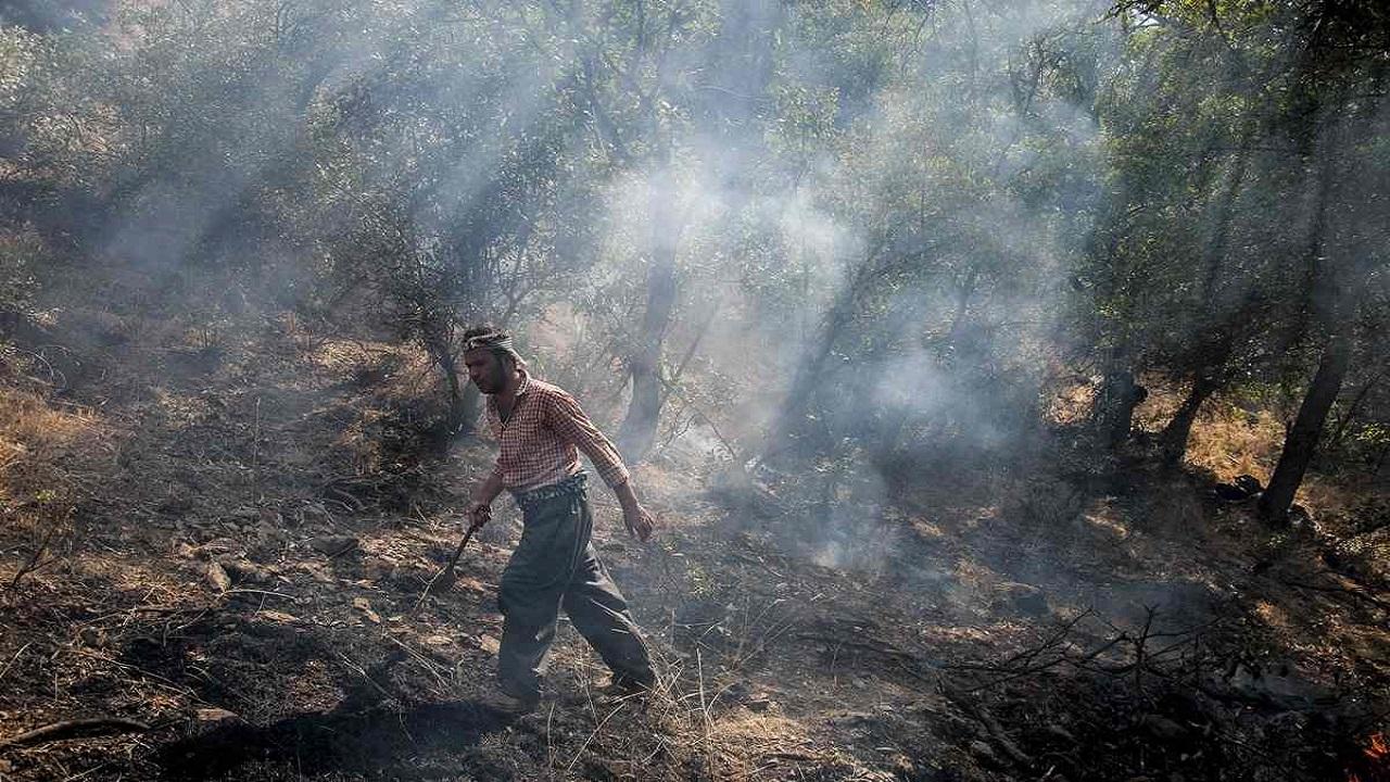 رقص آتش بر دامان جنگلهای زاگرس