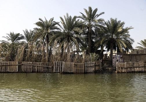 زندگی روی آب/روایت مردم محلی از زیستن در تالابهای خوزستان