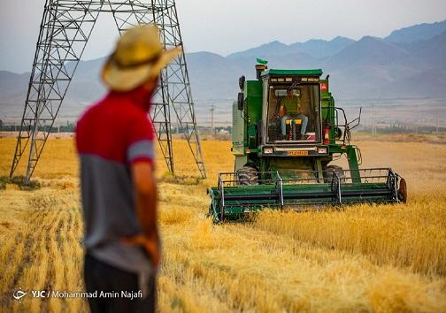 صفر تا صد اقدامات انجام شده در طرح ۵۵۰ هزار هکتاری/جهاد کشاورزی، نهادی برای توسعه و عمران روستایی