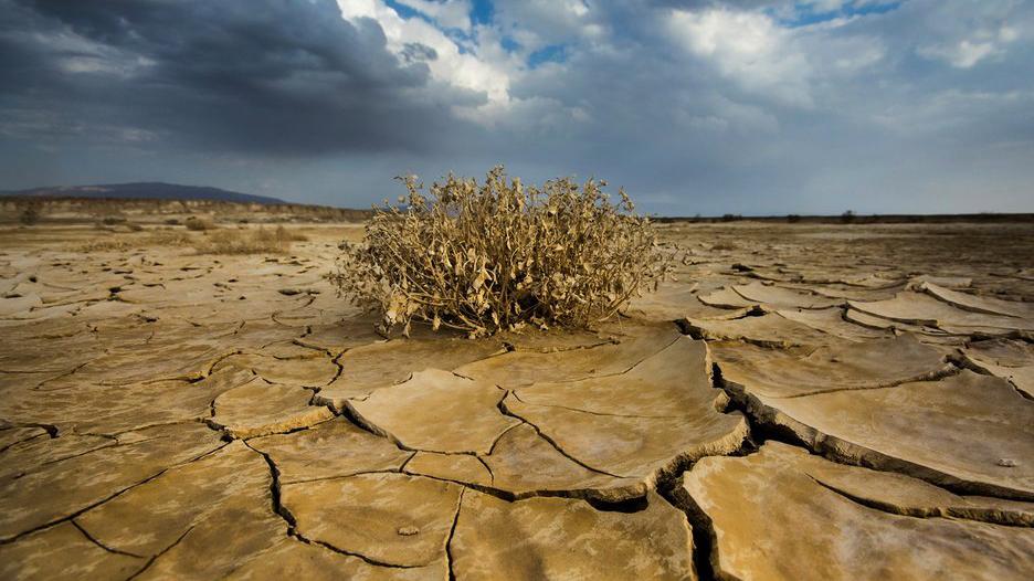 بحران بی آبی و ابرچالشی که چندان دور از وقوع نیست/خودسوزی دشتها پیامدخشکسالی