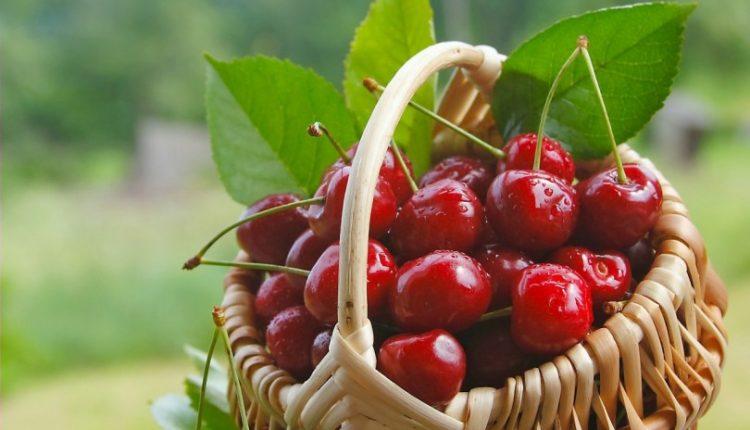 درحال تکمیل/ مصرف این میوه خوشمزه را در شب امتحان فرزندان تان جدی بگیرید