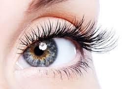 خوراکیهایی که استفاده از آنها به حفظ سلامت چشمها کمک میکند