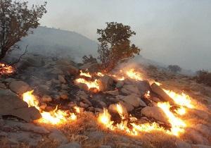 آتش سوزی پلنگ دره قم