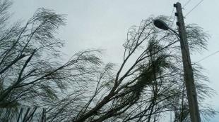 خسارت وزش باد شدید در گیلان
