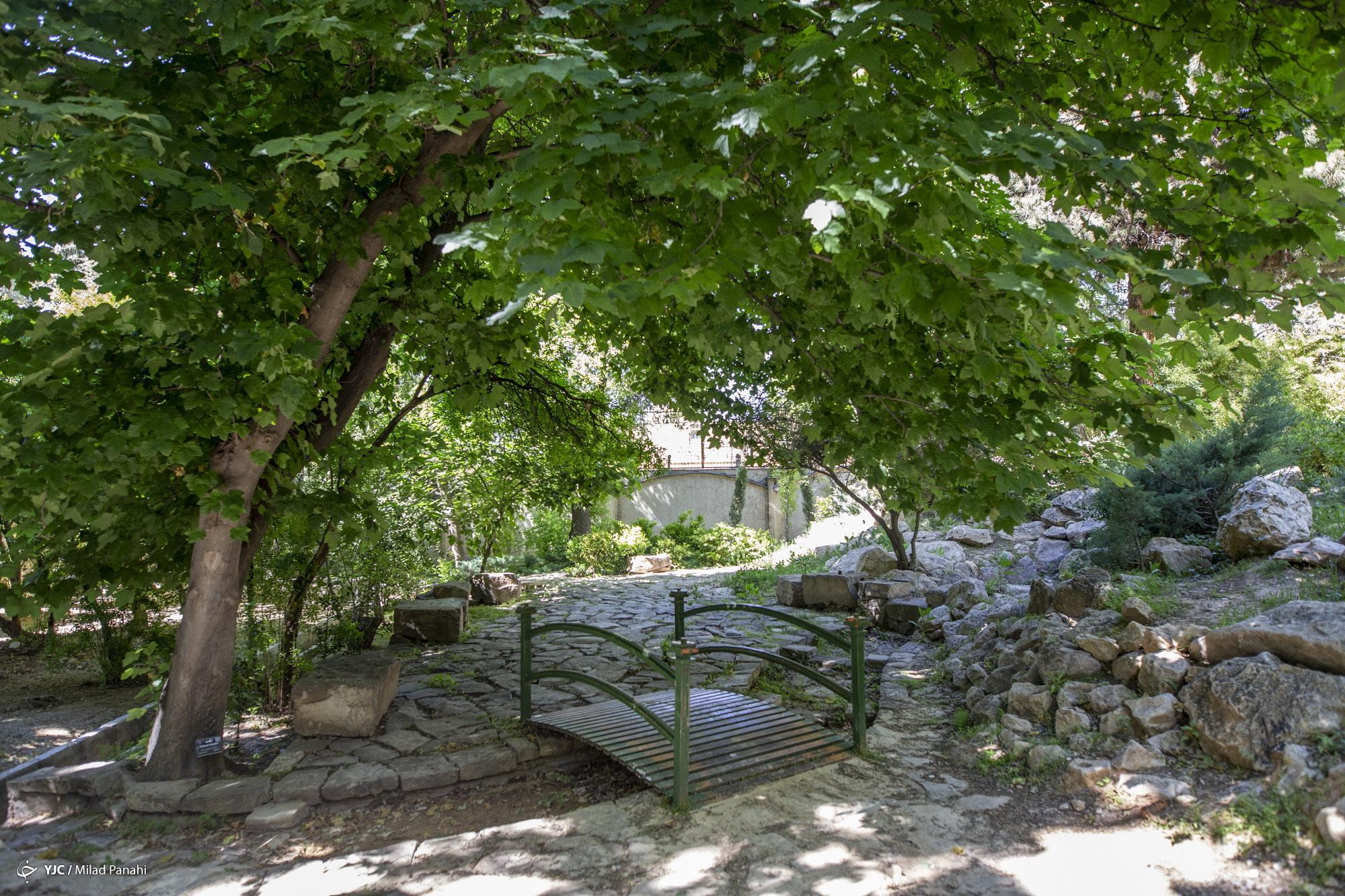 زيبايي چهار فصل شيراز در باغ ارم