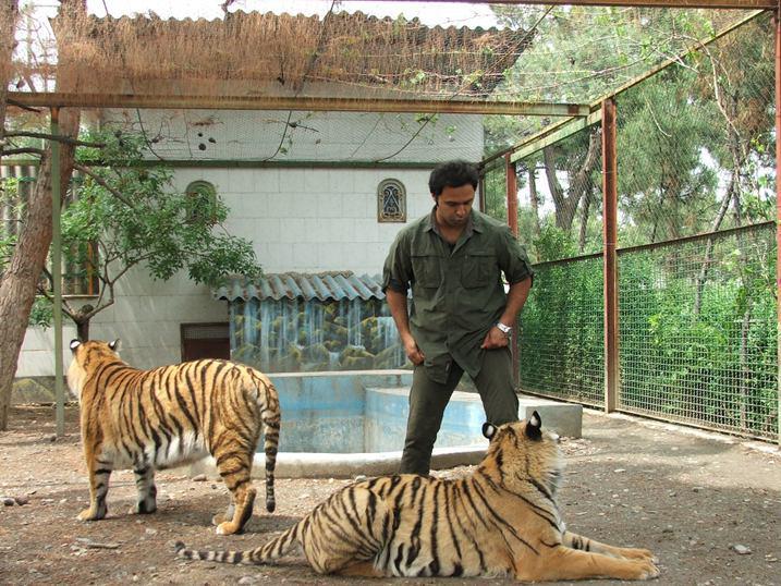 احداث مراکز نگهداری حیات وحش بدون نظارت محیط زیست/ هر فرد حقیقی یا حقوقی میتواند باغ وحش تاسیس کند