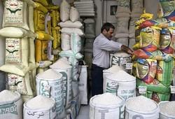 قیمت گذاری خودسر برنج ایرانی با نوسانات ارز در بازار/ دلالهایی که پول به جیب میزنند و به ریش مردم میخندند