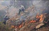 آتش سوزی در جنگلهای منطقه له لار شهرستان بدره مهار شد