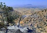 باشگاه خبرنگاران - آتش سوزی جنگل های گچساران بعد از ۵ شبانه روز مهار شد