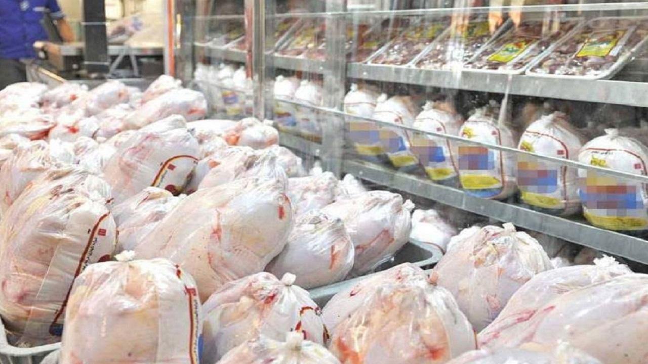 ذخیرهسازی ۴۸۰ تن مرغ منجمد در چهارمحال و بختیاری