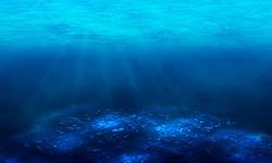 فاجعهای بدتر از کرونا این بار در اعماق دریاهای جهان + فیلم
