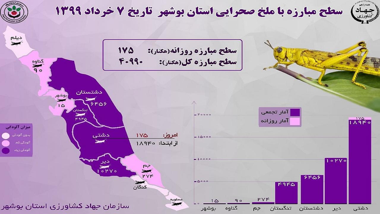 هجوم ملخ در بوشهر