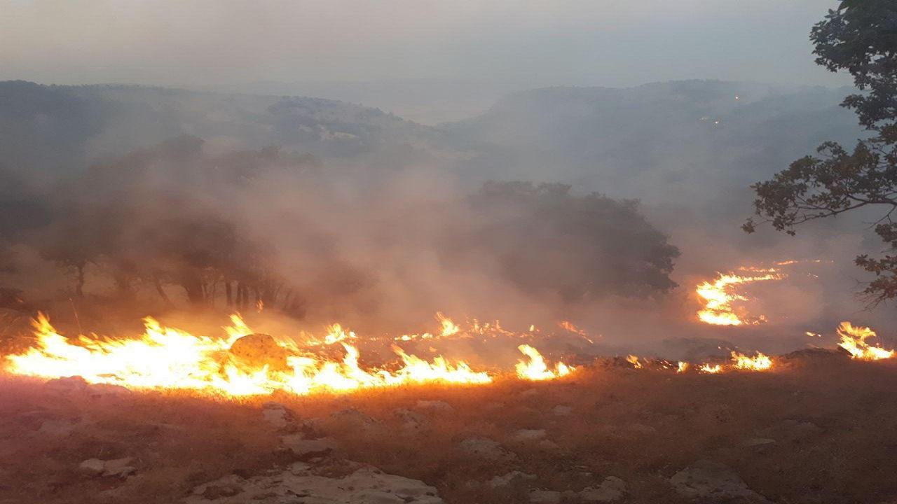 آتش سوزی در کوه های بوشهر