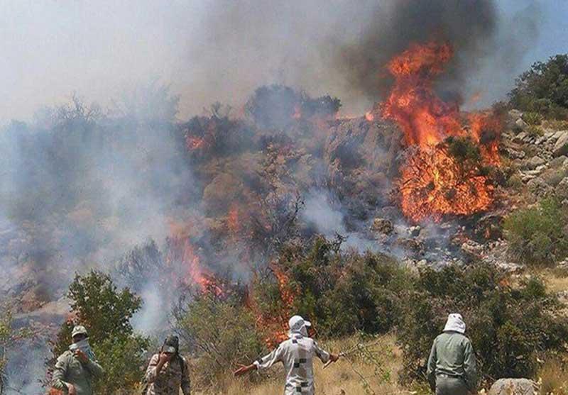 مهار آتش سوزی در ارتفاعات کیان آباد شیراز