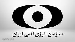 بیانیه سازمان انرژی اتمی ایران در پی تحریم دو دانشمند هستهای