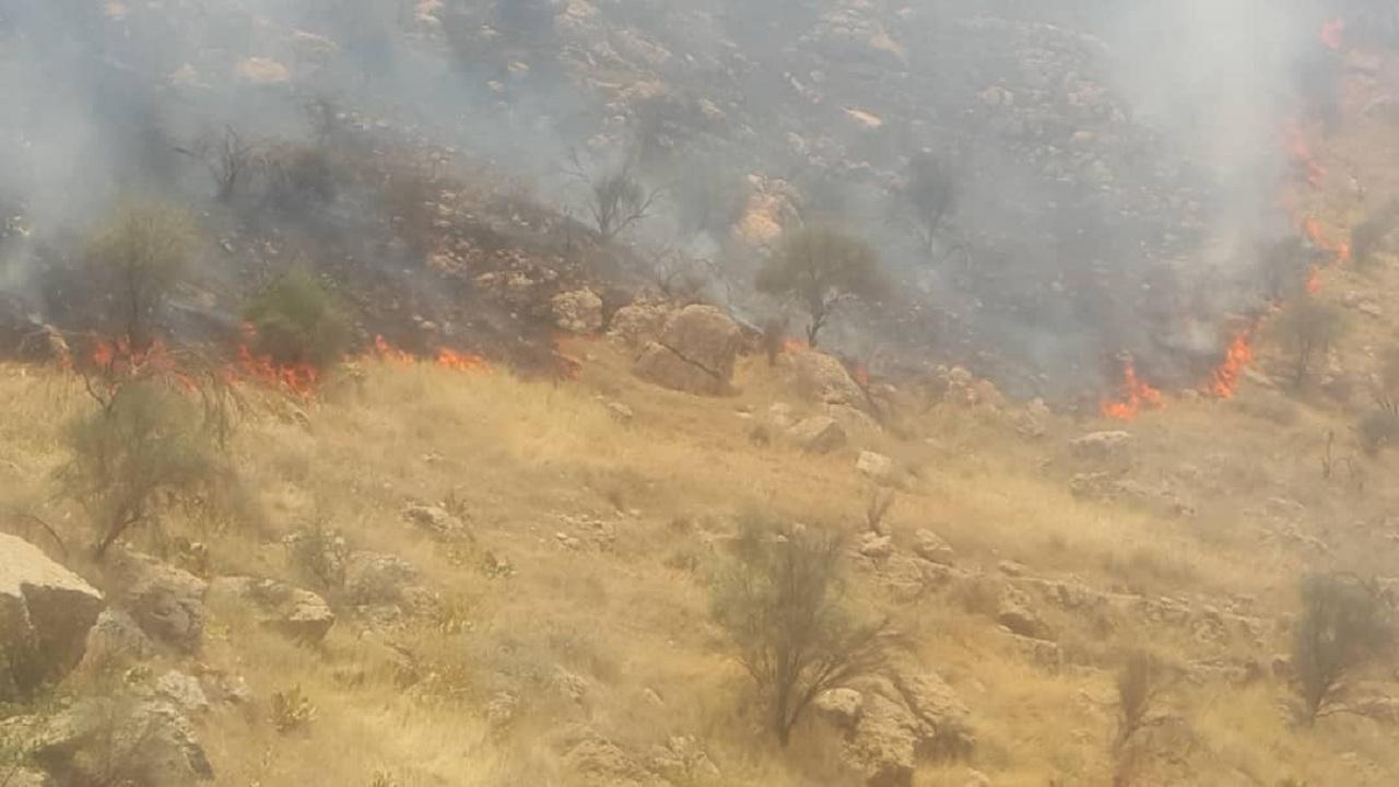 آتش سوزی در کوه سیاه دشتستان