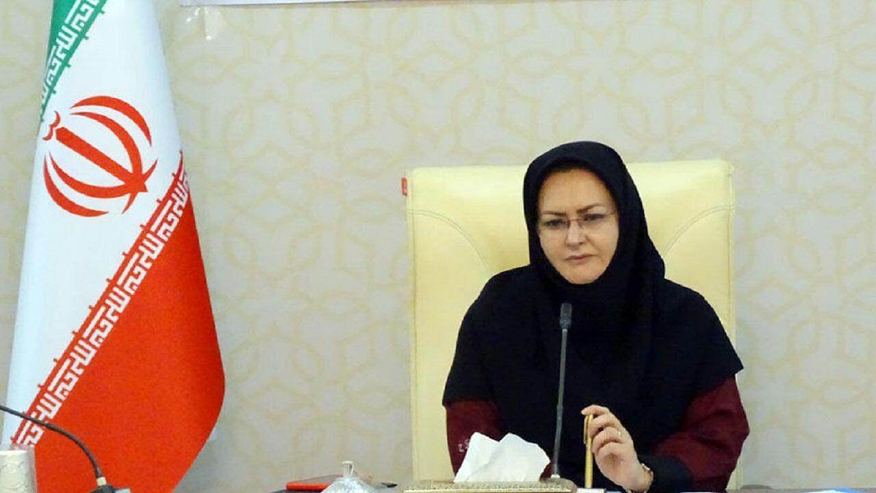 ۵۵۰ تن مرغ منجمد تنظیم بازار در سیستان و بلوچستان توزیع میشود