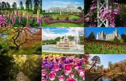 زیباترین باغهای جهان در کدام کشورها قرار دارند؟ + تصاویر