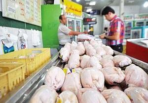 توزیع مرغ