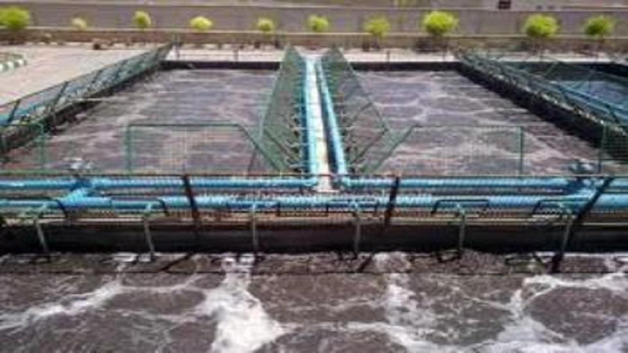 آبیاری محصولات کشاورزی با پساب فاضلاب در تربت حیدریه