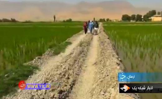 عشق و علاقه به کشاورزی بانوی تهرانی را روانه امیرآباد کرد+فیلم