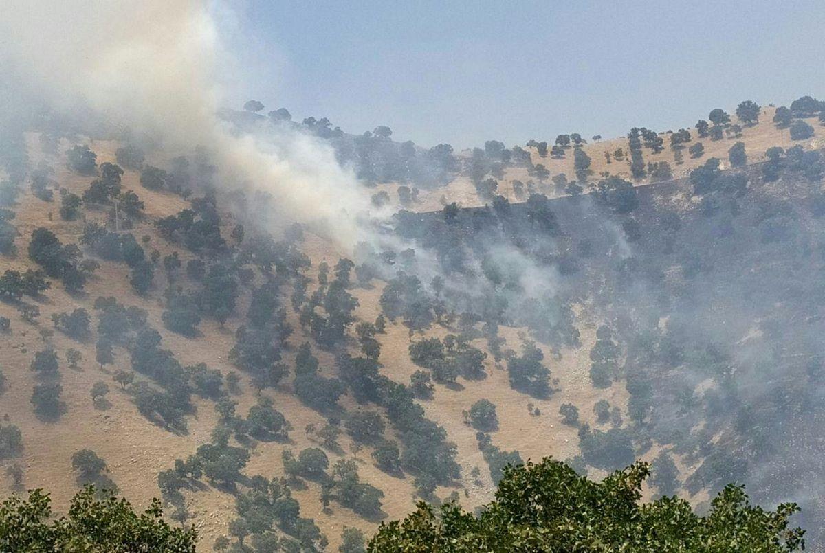 مهار آتشسوزی منطقه حفاظتشده بوزین مرخیل پس از ۸ روز