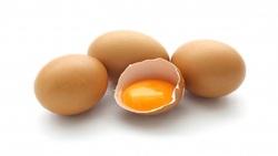 صادرات تخم مرغ متوقف شد؛ قیمت هر شانه تخم مرغ درب مرغداری ۲۳ هزار تومان