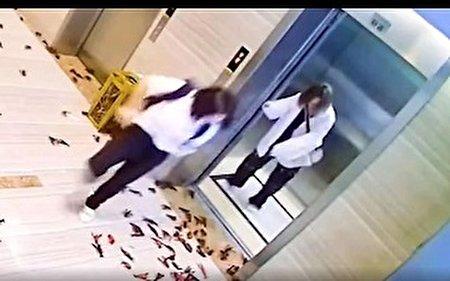 حمله خرچنگها در راهرو ساختمان اداری