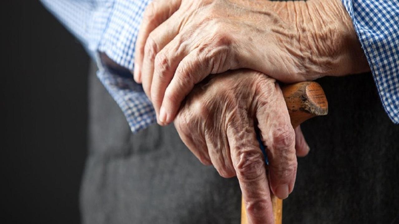 باشگاه خبرنگاران - کهریزک، میزبان سالمندان تحت پوشش کمیته امداد