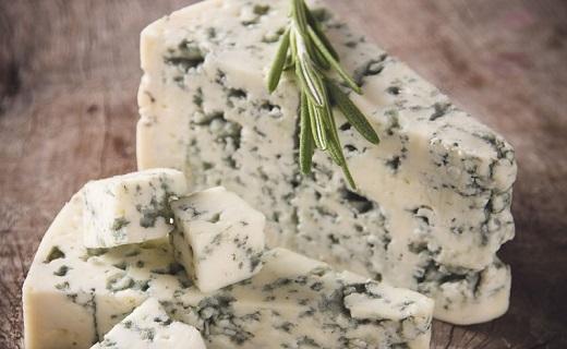 پنیر کپکزده