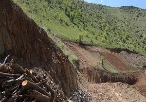 متصرف عرصههای طبیعی در مریوان به کاشت درخت محکوم شد