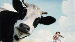 سرقت حیرت انگیز گاو با خودروی هاچبک! + فیلم