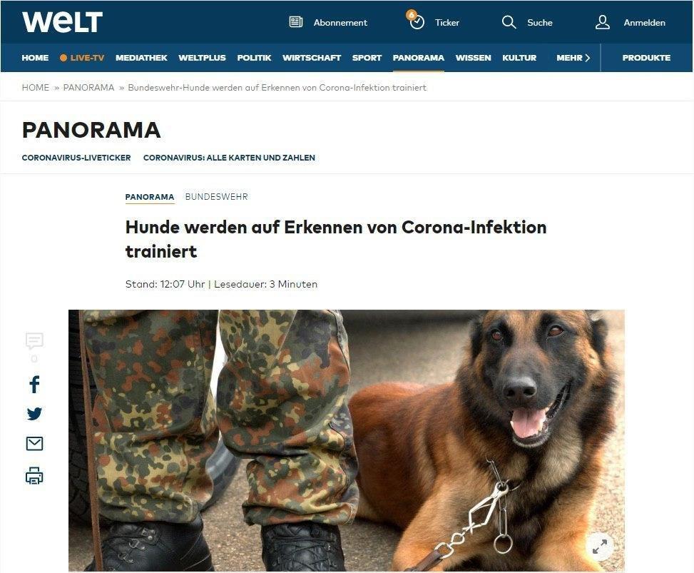 آموزش سگها برای تشخیص کرونا در آلمان!