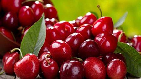 میوهای که دست قویترین داروهای مسکن را از پشت بسته است!