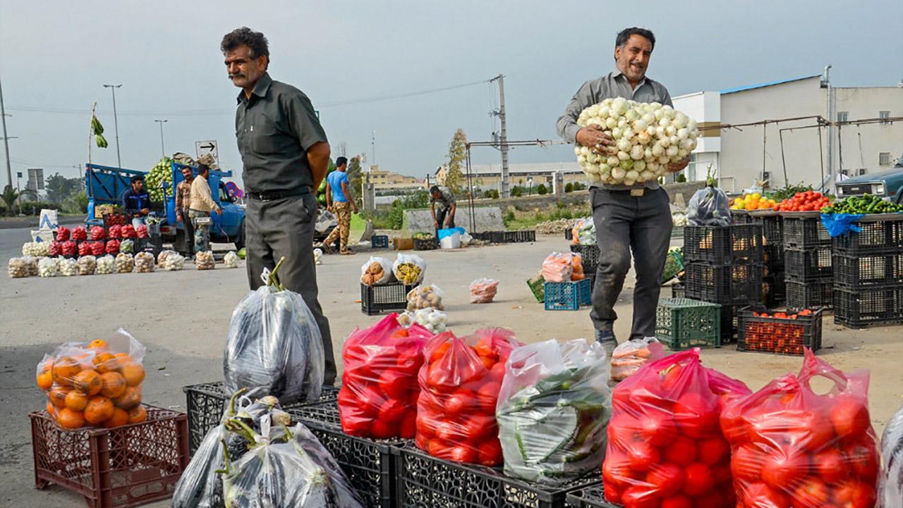 میوه فروشان محورهای ورودی و خروجی گرگان ساماندهی میشوند